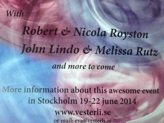 swedish-summer-camp-2014